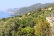 coast-at-pino