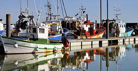 boats in the traditional fishing harbour at Pornic