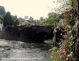 bridge-and-flowers