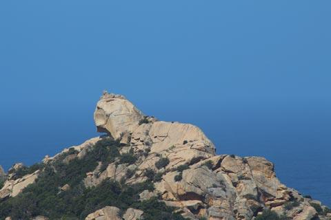 Lion rock overlooking bay of Roccapina