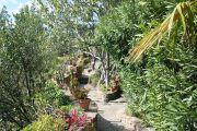 roguebrun-garden1