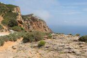 along-the-cliffs