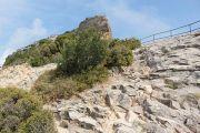 rocks-along-path