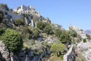 castle-ruins-2