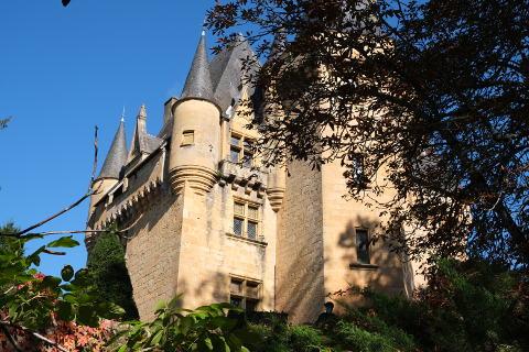 chateau dans le village de Saint-Leon-sur-Vézère
