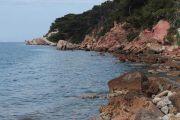 rocky-coast