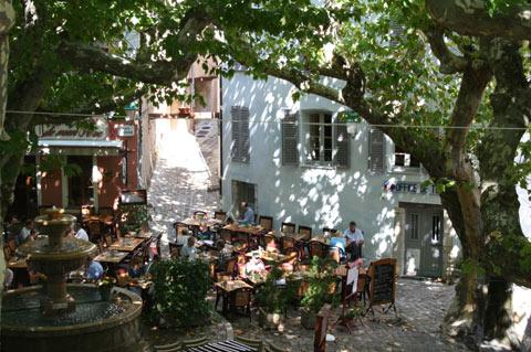 Cafe in shade of tree in Seillans