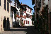 geraniums-street