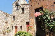 rose-and-lantern