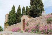 church-cemetery