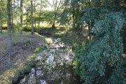 stream-in-village