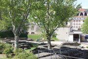 cybeles-garden-(3)