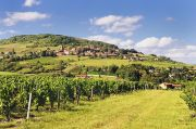 beaujolais-theize